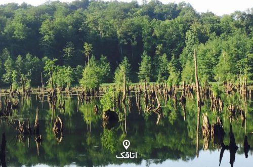 دریاچه ارواح نوشهر | دریاچه ای غرق در وهم و سکوت