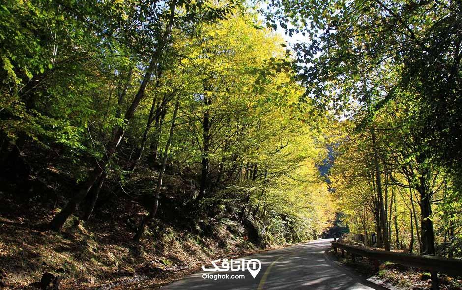 جاده کلاردشت عباس آباد