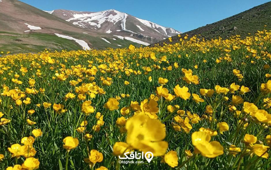 رشته کوه سهند، آتشفشان خاموش ایران