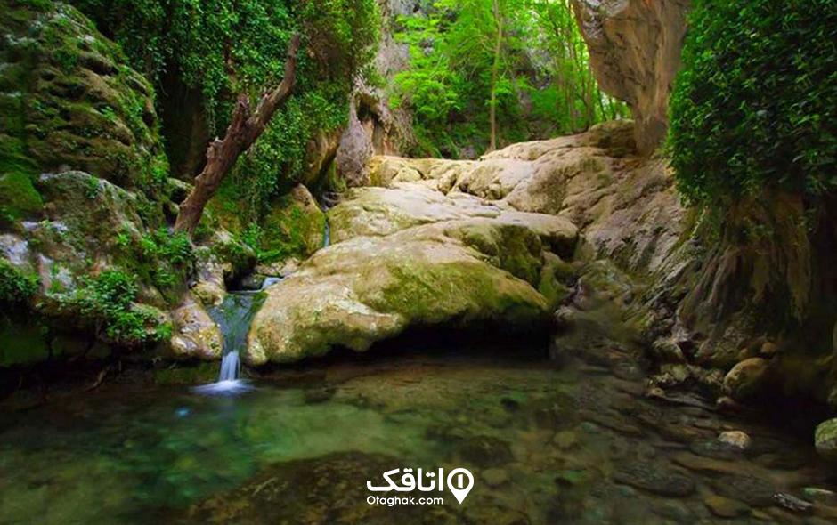 بهشت گمشده یا تنگ بستانک شیراز