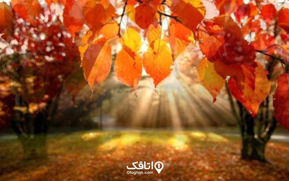 مقاصد پاییزی برای سفر کردن در شمال ایران