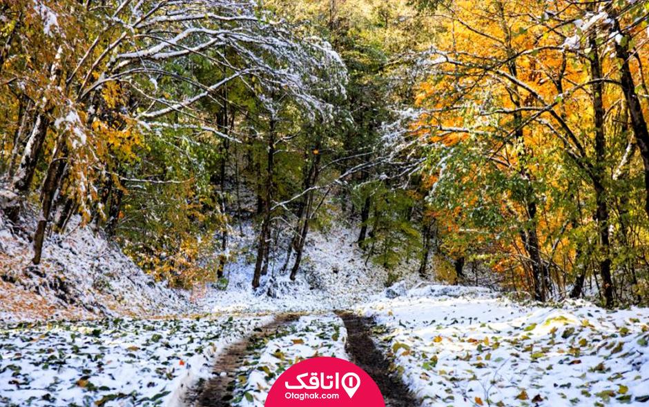 زمستان در تهران