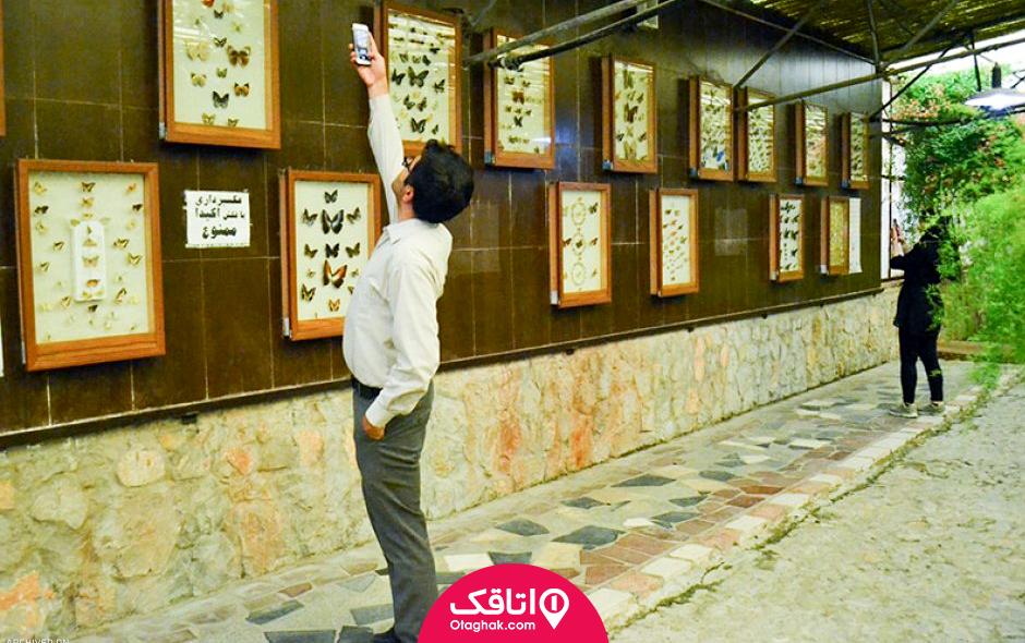باغ موزه پروانه های اصفهان