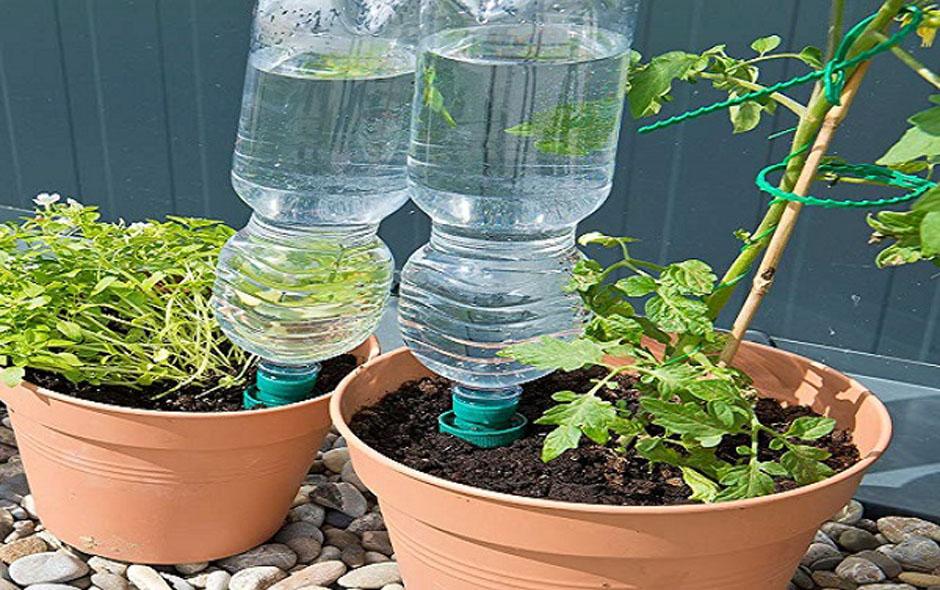 استفاده از بطری آب برای آبیاری
